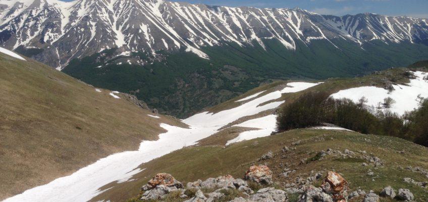 Vista della Majella dal Morrone